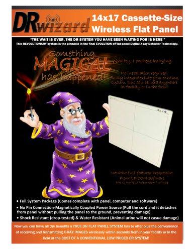 DR wizard brochure