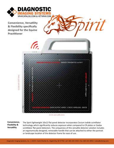 spirit brochure