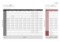 PINNACLE® Hip Solutions - 3