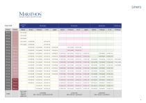 PINNACLE® Hip Solutions - 5