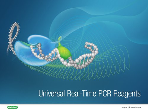 Universal Real-Time PCR Reagents