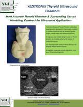 Thyroid Ultrasound Phantom - 1