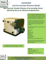YEZITRONIX End-Fire Prostate Phantom Model - 1