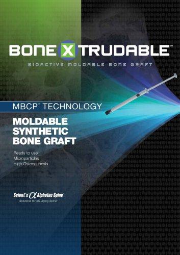 Moldable Synthetic  Bone Graft