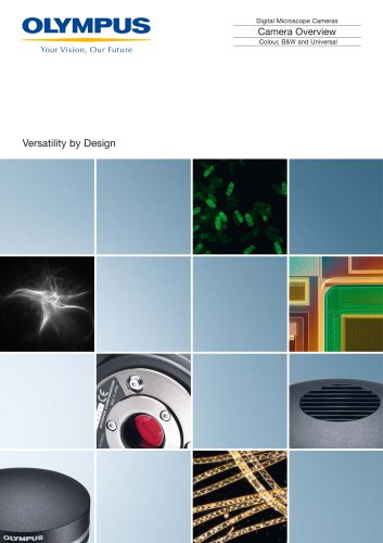Camera Overview DP 21 family brochure