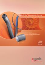NeuroBridge® Intermediate Catheter