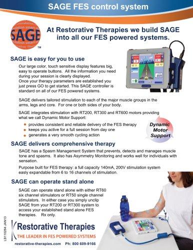 SAGE FES control system