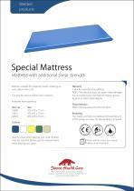 Special Mattress - 1