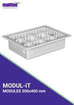 MODUL-iT - 1