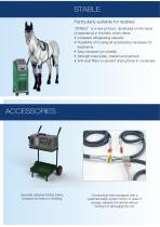 Equine catalogue - 6