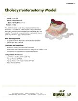 Cholecystenterostomy Model