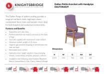 Dalton Petite Armchair with Handgrips DALTOK6029
