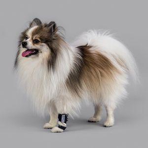 tala veterinária para patas