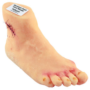 modelo de pé
