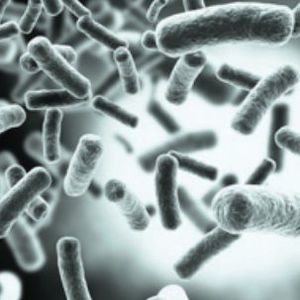 kit de teste de herpes