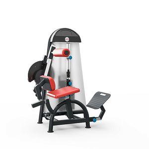 aparelho de musculação para extensão das costas