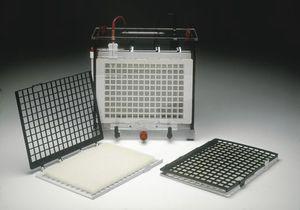 cuba de eletroforese