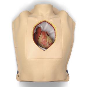 simulador para cirurgia torácica