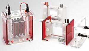 cuba de eletroforese vertical