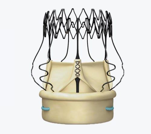bioprótese valvar aórtica / de tecido bovino / sem sutura