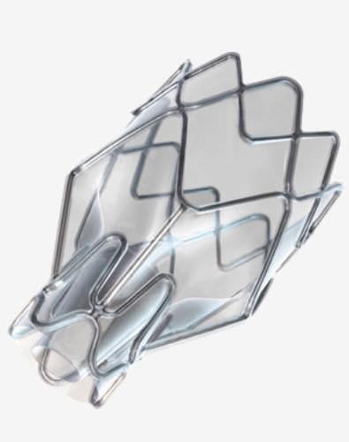bioprótese valvar endobrônquica / sem sutura
