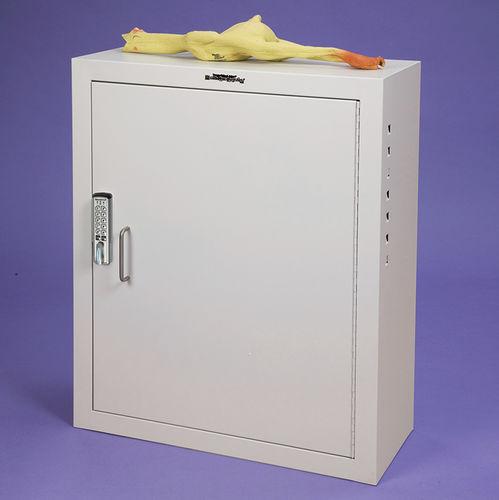 armário de segurança