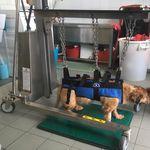carrinho multifuncional / de emergência / de curativos / de esterilização