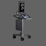 ecógrafo com carrinho, compacto / para ecografia urológica / em preto e branco / com tela sensível ao toque